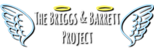 Briggs and Barrett Project